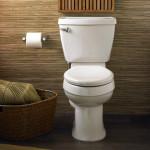 toilets1