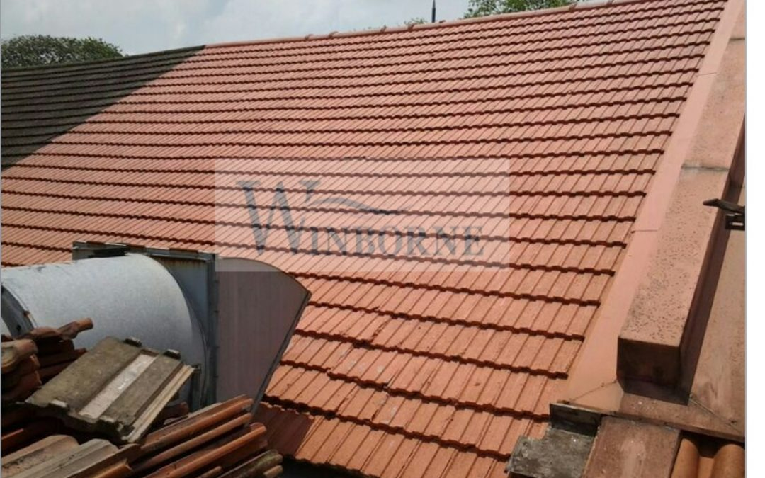 Things to know about Roof Top Waterproofing
